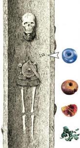 Grób kobiety z epoki brązu. Źródło:  wwww.